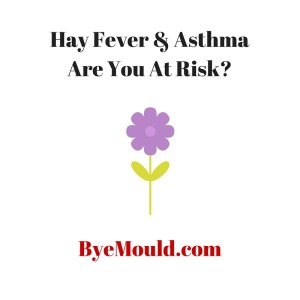 Hay Fever & Asthma Are You At Risk pollen mould byemould