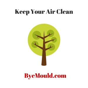 Keep Your Air Clean dehumidifier allergy air purifier byemould