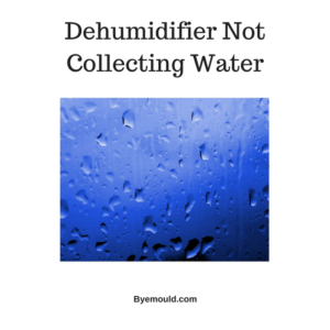Dehumidifier is not collecting water