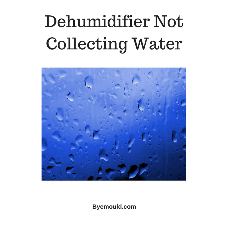 Dehumidifier Not Collecting Water